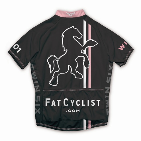 Fat Cyclist 2009 Jersey: Men's Back